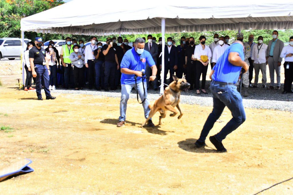 Residencias-caninas-en-AILA-El-Caribe-1024x682.jpg