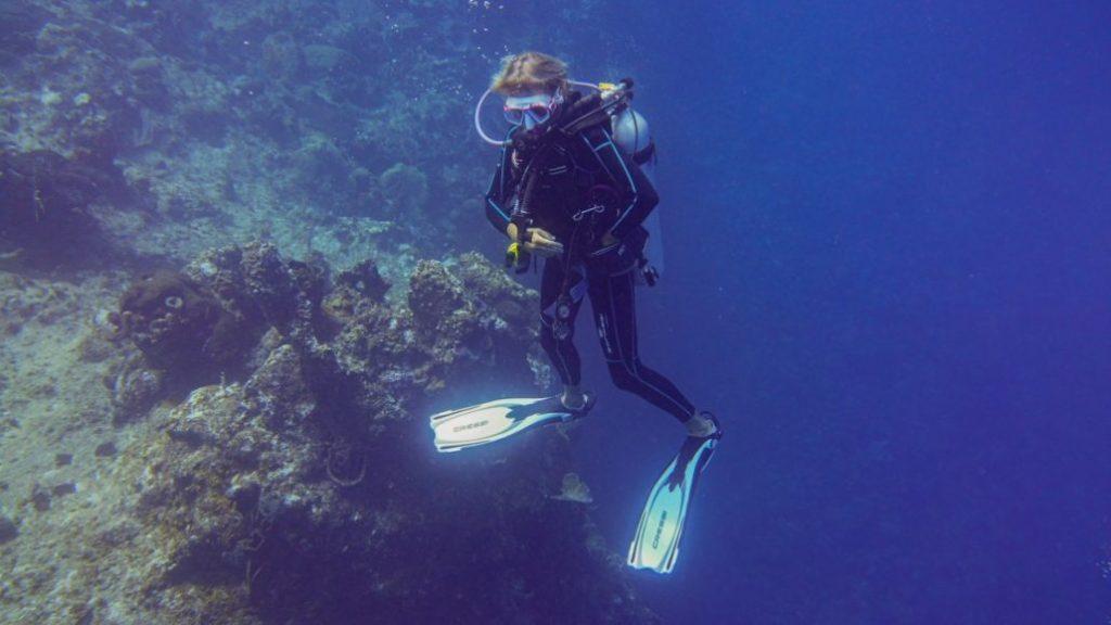 Arrecifes-Ministerio-de-Medio-Ambiente-1024x576.jpeg